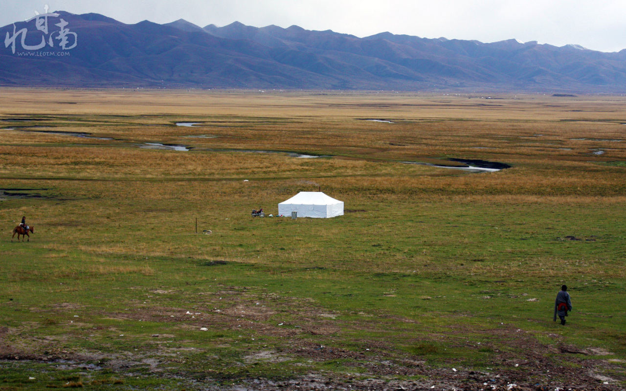 招待完我们,夫妻俩向帐篷走去。