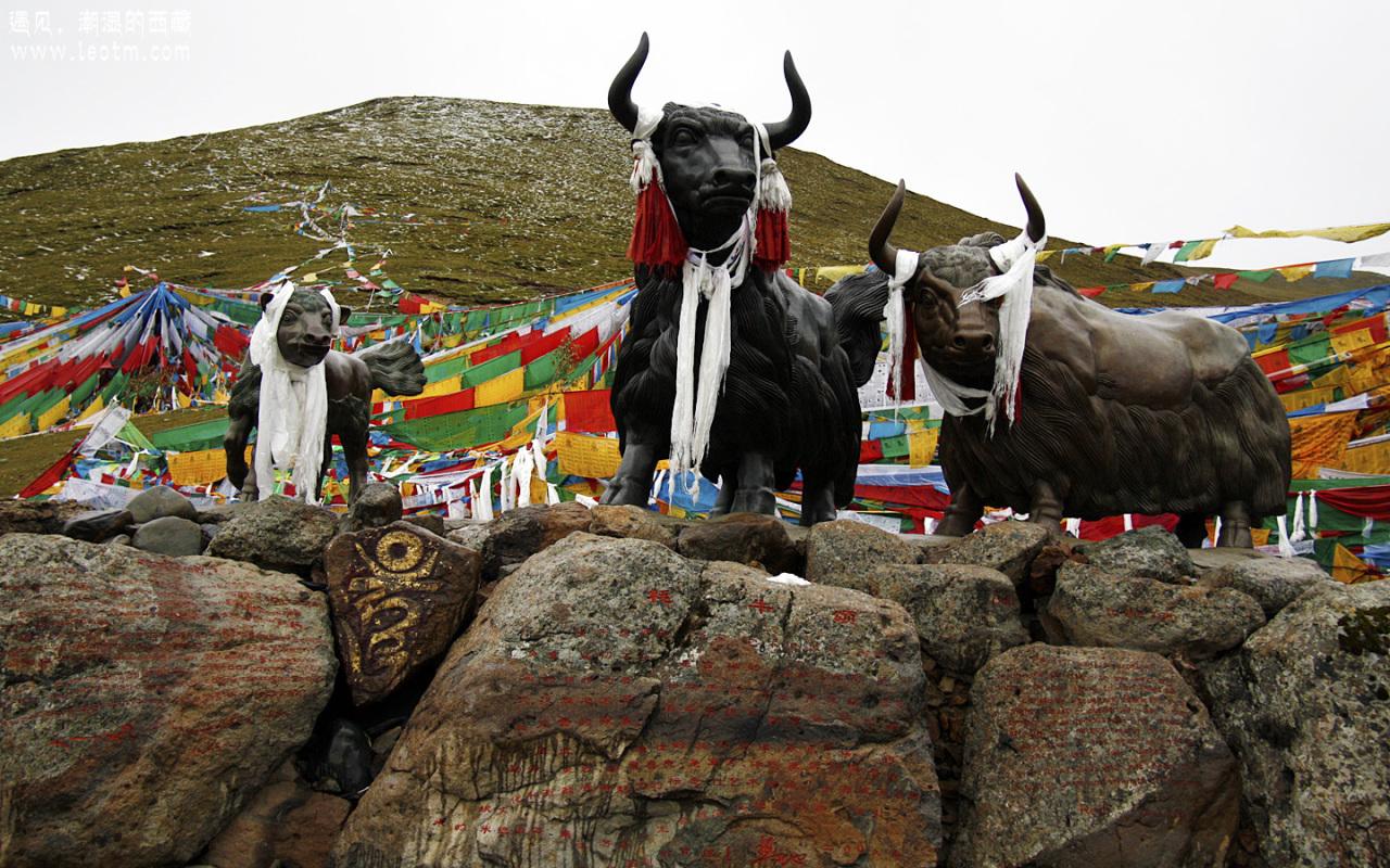 米拉山口上的牦牛及藏獒雕塑