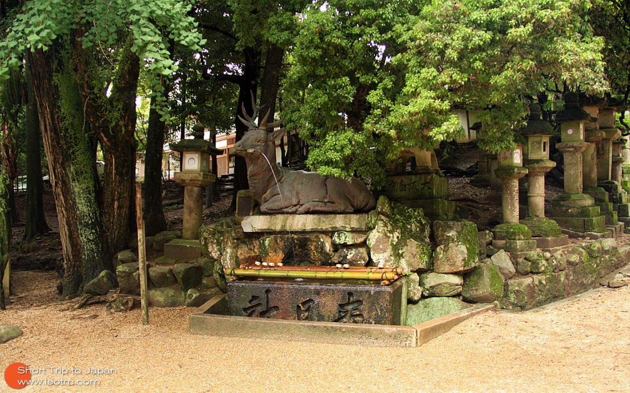 洗手的地方,在日本的神社外头都有这样洗手的地方,通常的做法是一勺水洗左手,一勺水洗右手,一勺水立起来洗手柄。也有些会稍微小喝一口的。