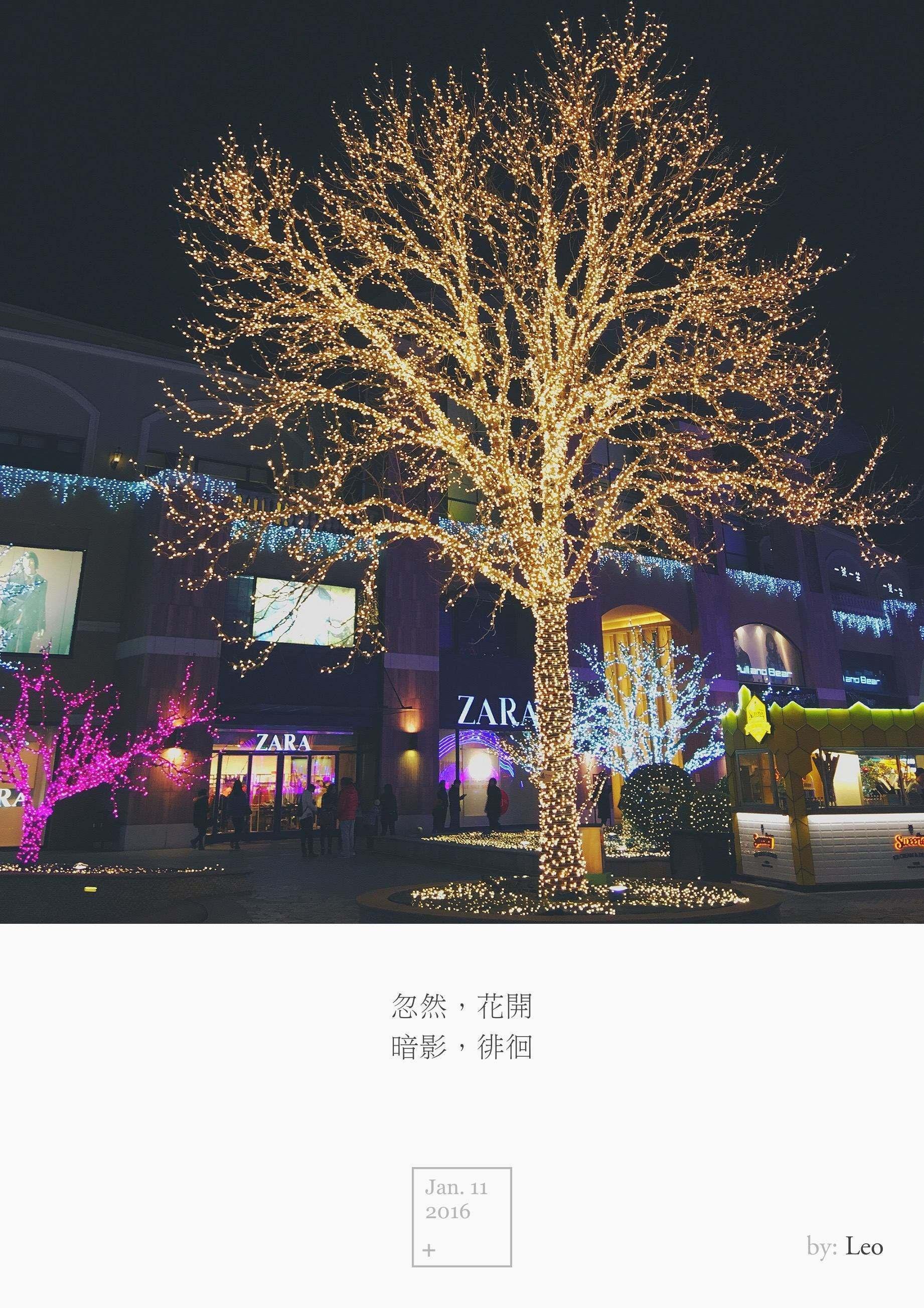 灯光秀 树