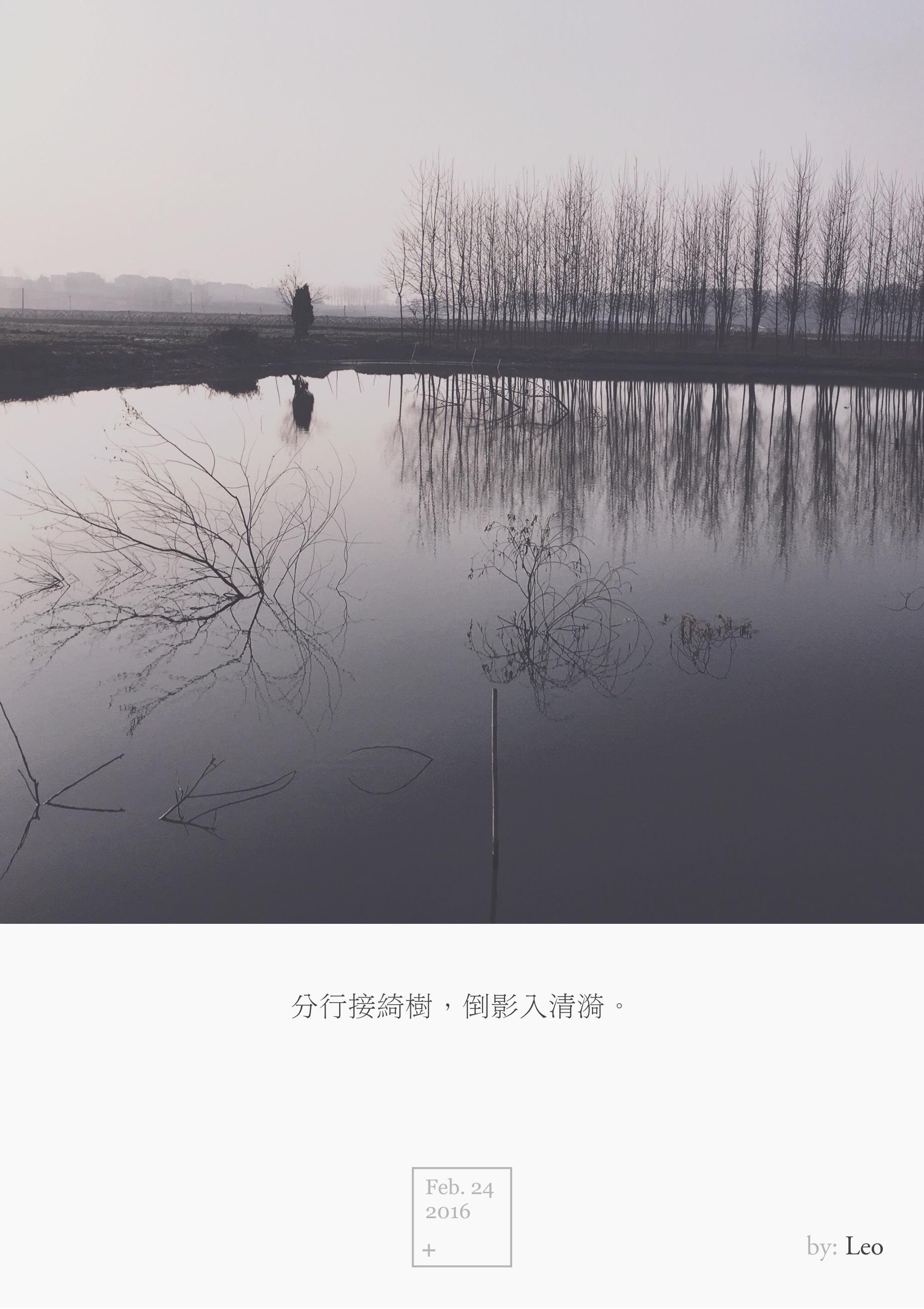 湖面倒影树木