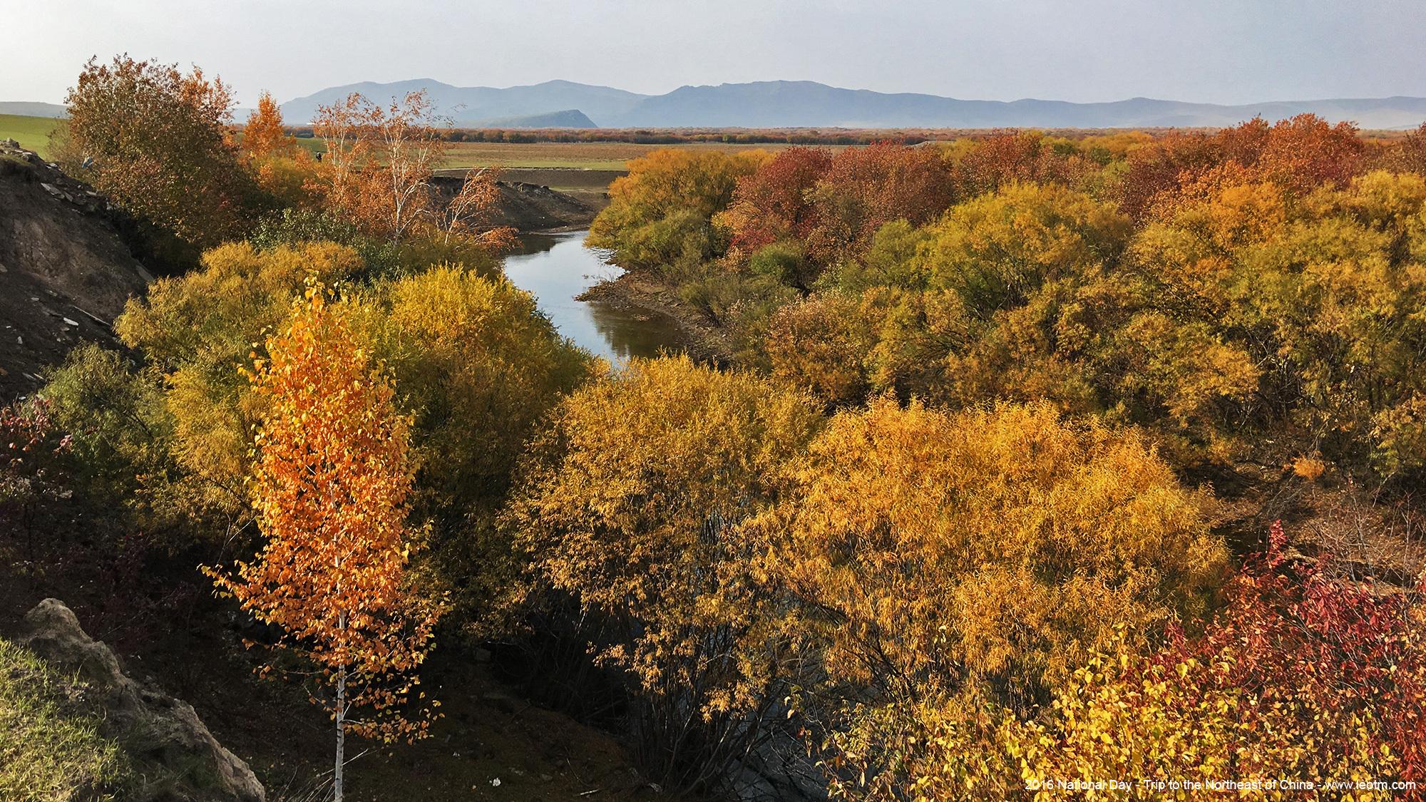 额尔古纳河湿地红叶林