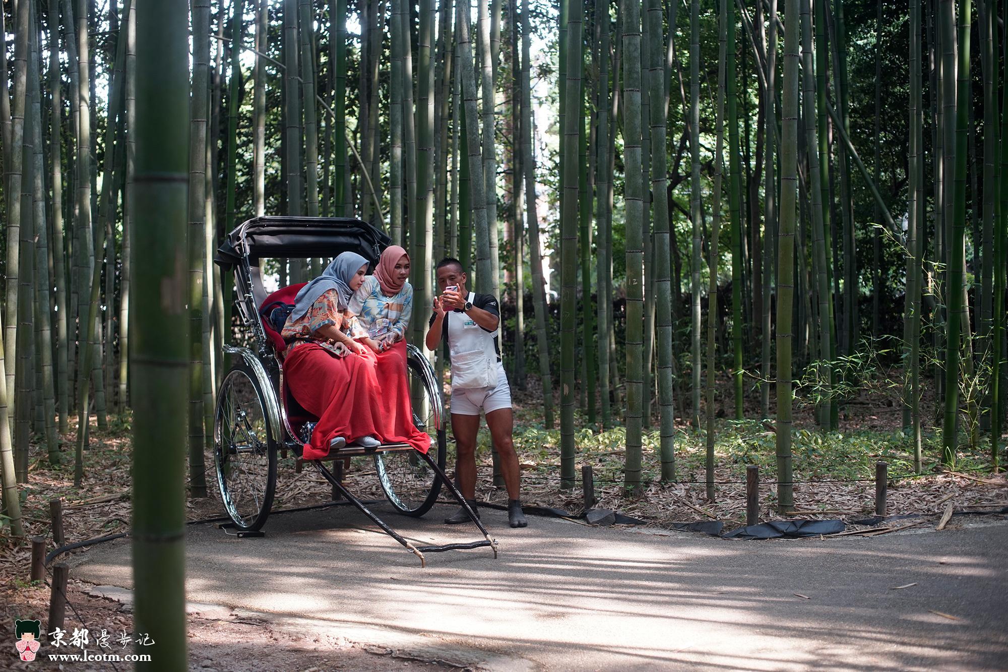 天龙寺旁的竹林,帮游客拍照的车夫